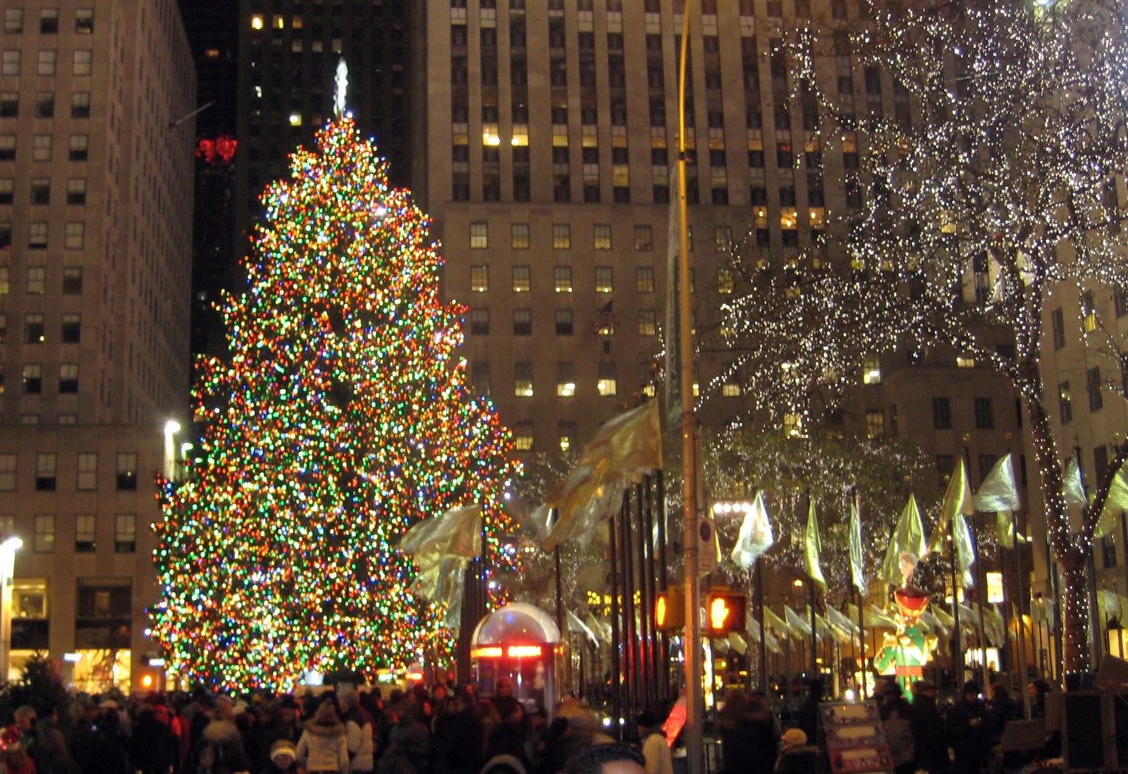 Christmas Tree Store Near Me