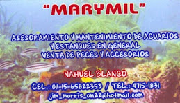 """Cerealera """"Marymil"""""""