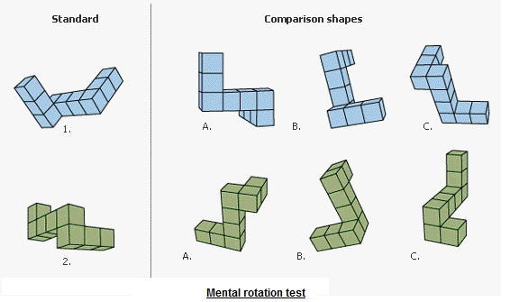 mental rotation of images Mental rotation is the ability to rotate mental representations of two-dimensional and three-dimensional objects as it is related to the visual representation of such rotation within the human mind.