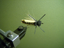 Air-filled Yellow Stonefly Adult