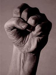 Mantengamos siempre el puño en alto
