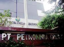 Lowongan Kerja di PT Petrokimia