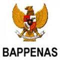 CPNS BAPPENAS