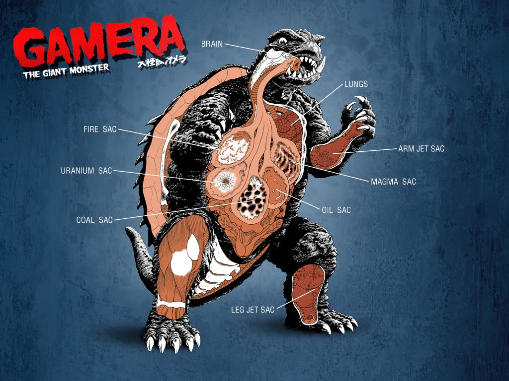 Gamera Flying Godzilla 3D News And I...