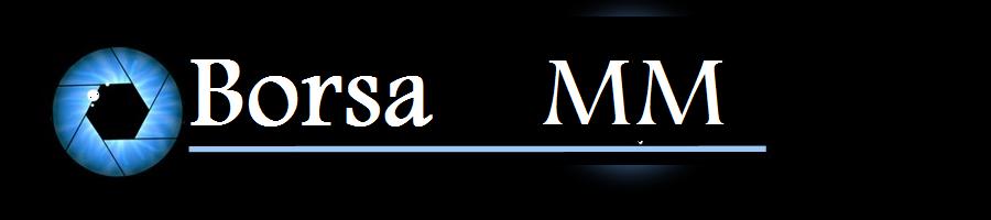 Borsa Maramures - MM