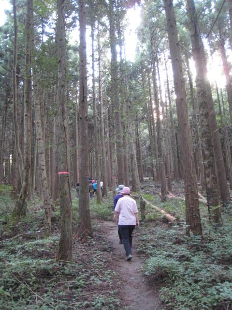 森の中のアーユルヴェーダ合宿
