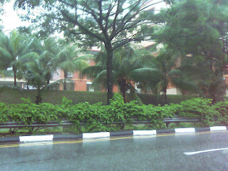 BuangkokGreen Road Morning Rain