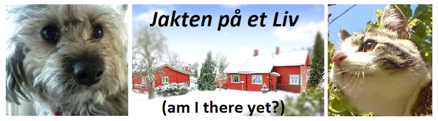 Jakten på Et Liv (am I there yet?)