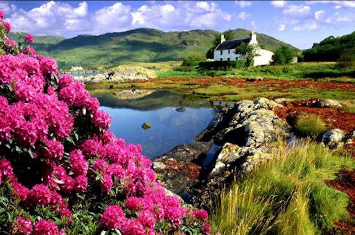 Lochalsh, iskoçya, manzara