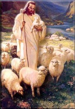 JESUS Y LAS OVEJAS