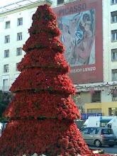 Las pasadas Navidades en Málaga