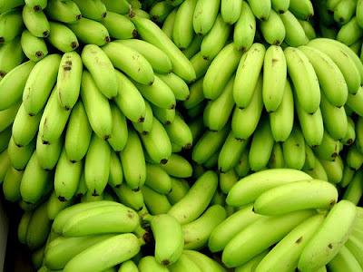 การปลูกกล้วยแบบห่อเครือกล้วย