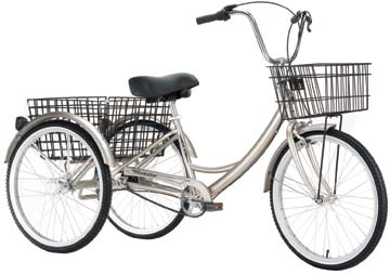 For around $250 this adult tricycle could be mine.