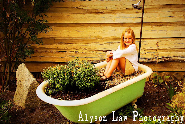 Alyson Law Photography