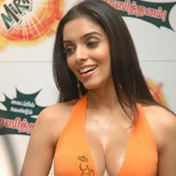 With no Bollywood offers, Asin moves South