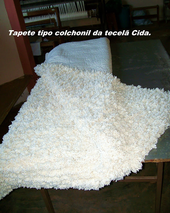 Tapetes Peludos tipo Colchonil