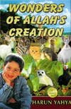 Wonders of Allah's Creation