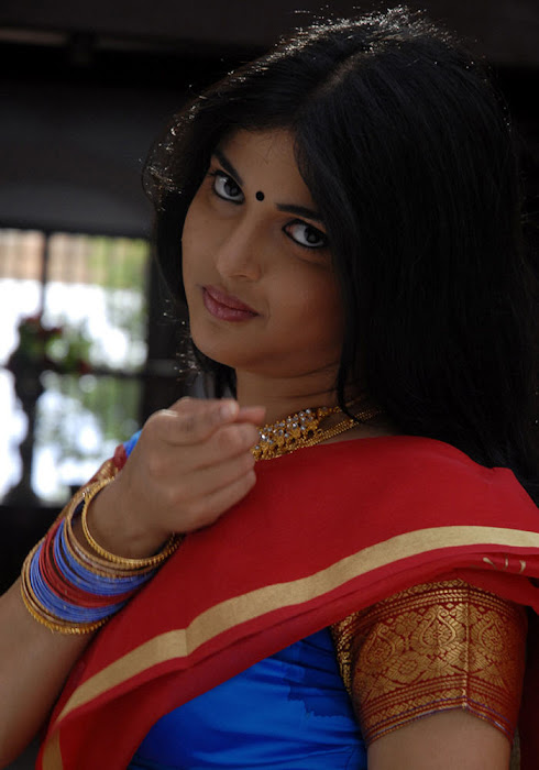 nichole saree photo gallery