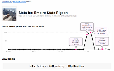 Empire State Pigeon daily traffic statistics