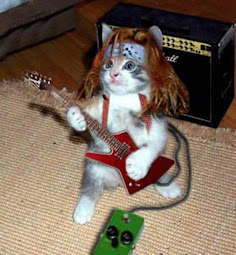 Rock On Kitty