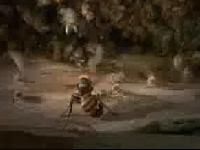 當蜜蜂遇到虎頭蜂侵襲時