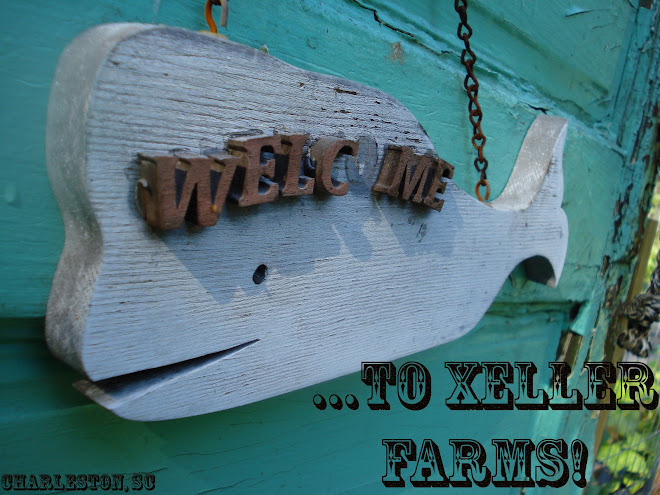 Xeller Farms