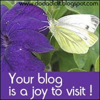 Blog award from Doda