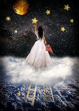 Palavras são estrelas que colho para vós...