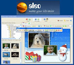 Paint Aleo Photo Collage Maker review