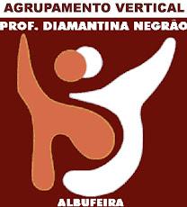 Agrupamento Vertical Prof.ª Diamantina Negrão