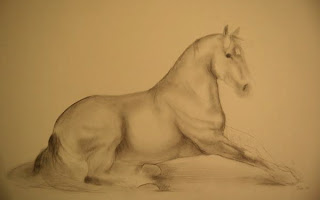 pencil drawing of mare after rolling