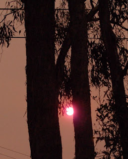 sunset during victorian bushfires