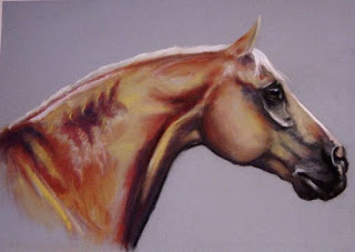 palomino portrait in pastel by ophelia keys