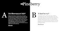 Pineberry Info