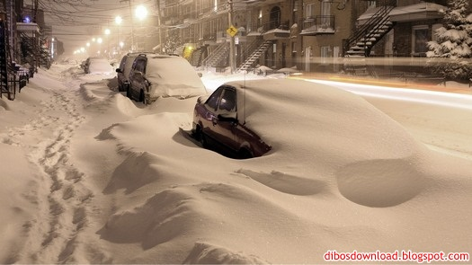 cars under snow remained