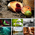 HD Widescreen Wallpapers Pack 26