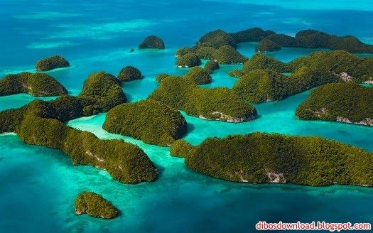 tropical jungle islands