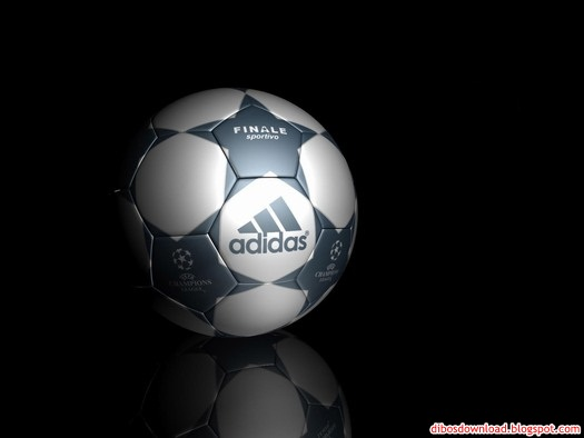 brand adidas soccer ball