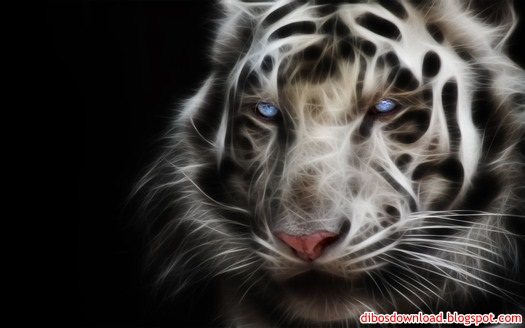3d blue eyed white tiger