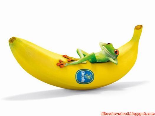 banana lying on the frog