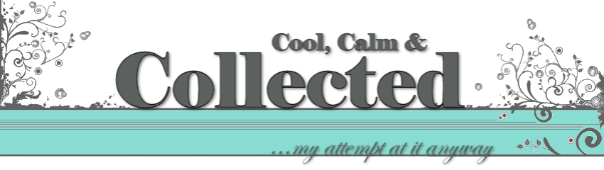 english idioms sayings and expressions cool calm and. Black Bedroom Furniture Sets. Home Design Ideas