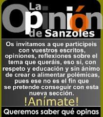 SECCIÓN DE OPINIÓN