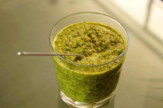 cilantro chutney