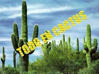 Todo en cactus for Informacion sobre el cactus