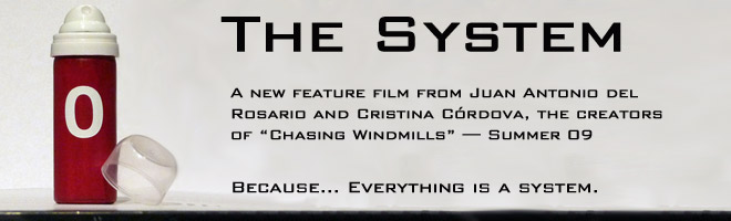 The System film