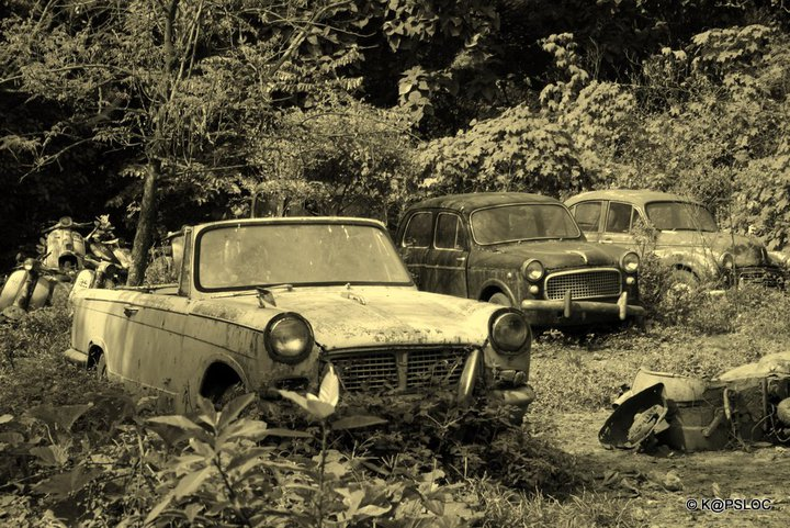Vintage Cars in Junkyard