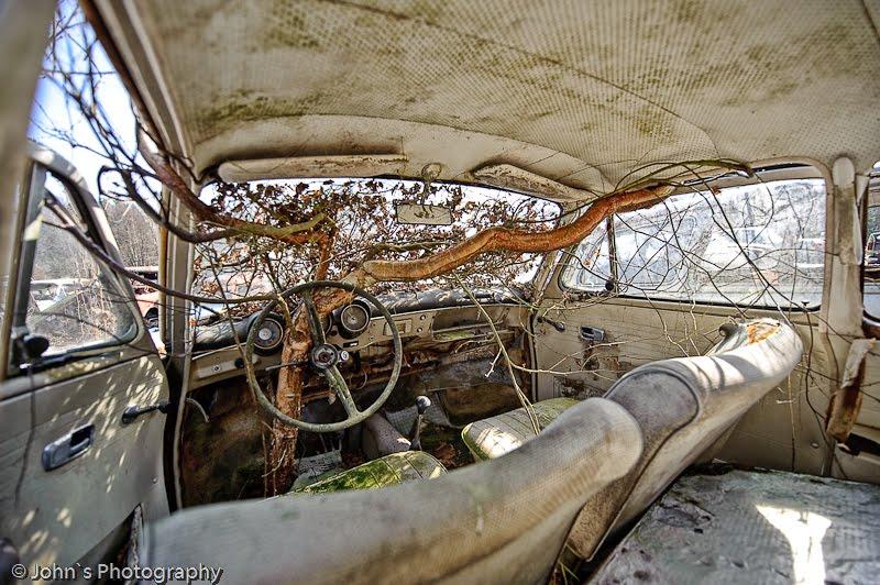 Old rusty cars | Car cemetery