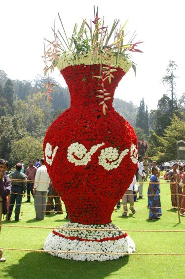 http://3.bp.blogspot.com/_YZK1E_LNzfA/S-5fl1ZbXeI/AAAAAAAAA9c/-o_1hFjep6k/s1600/Flower+pot.JPG