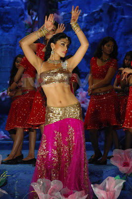 Shriya Saran in Don Seenu film stills