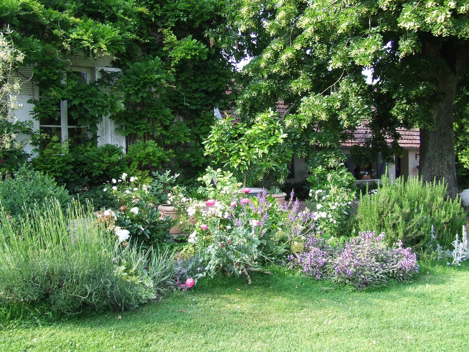Our french country guest cottage our garden for Jardines de casas rusticas